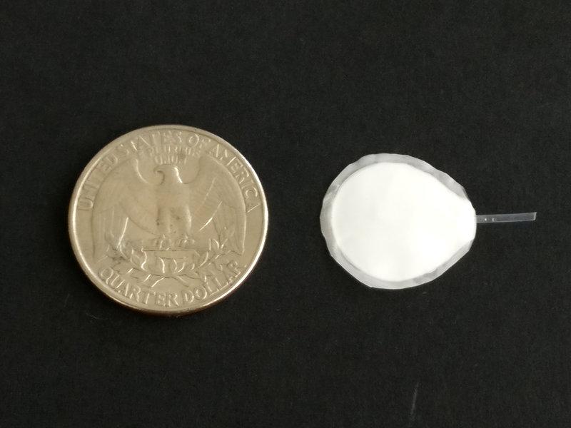 Encellin Insulin Implant
